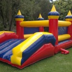 Castle with Slide-New-website lge